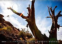 Mountain Bike 2019 by Stef. Candé / UK-Version (Wall Calendar 2019 DIN A3 Landscape) - Produktdetailbild 6
