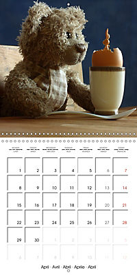 Mr. Bud, the cute bear (Wall Calendar 2019 300 × 300 mm Square) - Produktdetailbild 4