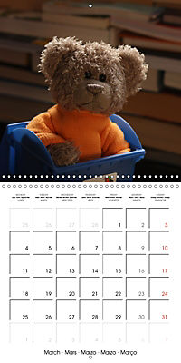 Mr. Bud, the cute bear (Wall Calendar 2019 300 × 300 mm Square) - Produktdetailbild 3
