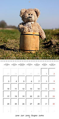 Mr. Bud, the cute bear (Wall Calendar 2019 300 × 300 mm Square) - Produktdetailbild 6