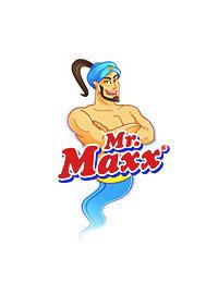 Mr. Maxx Spray-Mop - Produktdetailbild 2