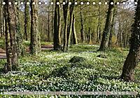 Münsterland - Vielfältige Schönheit (Tischkalender 2019 DIN A5 quer) - Produktdetailbild 6