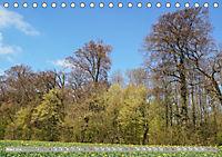 Münsterland - Vielfältige Schönheit (Tischkalender 2019 DIN A5 quer) - Produktdetailbild 3
