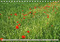 Münsterland - Vielfältige Schönheit (Tischkalender 2019 DIN A5 quer) - Produktdetailbild 7