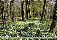 Münsterland - Vielfältige Schönheit (Wandkalender 2019 DIN A2 quer) - Produktdetailbild 6