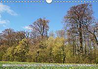Münsterland - Vielfältige Schönheit (Wandkalender 2019 DIN A4 quer) - Produktdetailbild 3