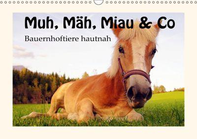 Muh, Mäh, Miau & Co (Wandkalender 2019 DIN A3 quer), k.A. Leon