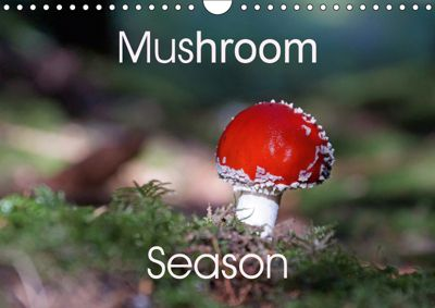 Mushroom Season (Wall Calendar 2019 DIN A4 Landscape), Flori0