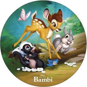 Music From Bambi (Picture Disc) (Vinyl), Diverse Interpreten