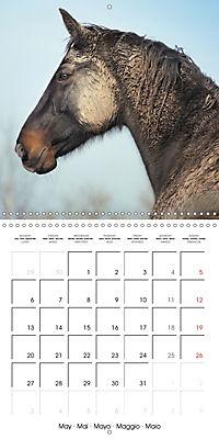 Mustangs - Wild Horses in the USA (Wall Calendar 2019 300 × 300 mm Square) - Produktdetailbild 5