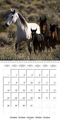 Mustangs - Wild Horses in the USA (Wall Calendar 2019 300 × 300 mm Square) - Produktdetailbild 10