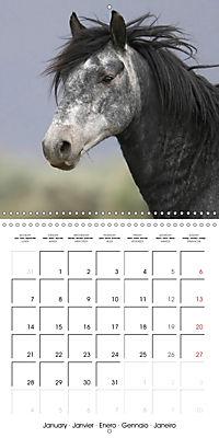 Mustangs - Wild Horses in the USA (Wall Calendar 2019 300 × 300 mm Square) - Produktdetailbild 1