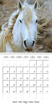 Mustangs - Wild Horses in the USA (Wall Calendar 2019 300 × 300 mm Square) - Produktdetailbild 3