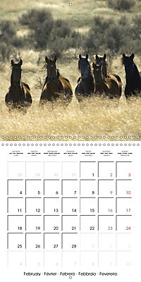 Mustangs - Wild Horses in the USA (Wall Calendar 2019 300 × 300 mm Square) - Produktdetailbild 2
