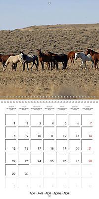 Mustangs - Wild Horses in the USA (Wall Calendar 2019 300 × 300 mm Square) - Produktdetailbild 4