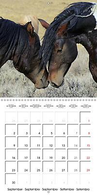 Mustangs - Wild Horses in the USA (Wall Calendar 2019 300 × 300 mm Square) - Produktdetailbild 9