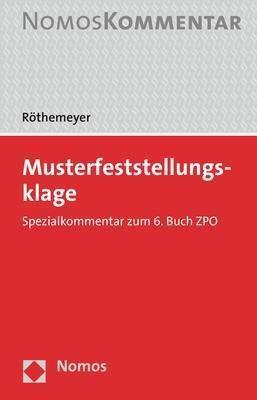 Musterfeststellungsklage, Peter Röthemeyer