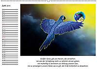 Mutter Erde und ihre Kostbarkeiten. Mit indianischen Weisheiten (Wandkalender 2019 DIN A2 quer) - Produktdetailbild 6