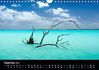Mutter Natur (Wandkalender 2019 DIN A4 quer) - Produktdetailbild 12