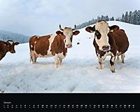 Muuuuh Kalender 2018 - Produktdetailbild 1