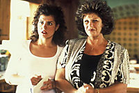 My Big Fat Greek Wedding - Produktdetailbild 4