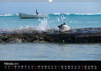 My Bonaire 2019 (Wall Calendar 2019 DIN A3 Landscape) - Produktdetailbild 2