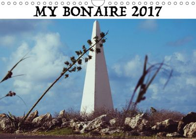 My Bonaire 2019 (Wall Calendar 2019 DIN A4 Landscape), Ludger Staudinger