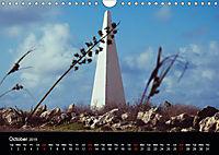 My Bonaire 2019 (Wall Calendar 2019 DIN A4 Landscape) - Produktdetailbild 10