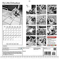 My Little Chihuahua (Wall Calendar 2019 300 × 300 mm Square) - Produktdetailbild 13