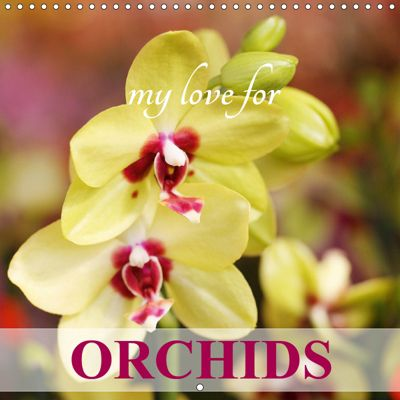 My Love for Orchids (Wall Calendar 2019 300 × 300 mm Square), Gisela Kruse