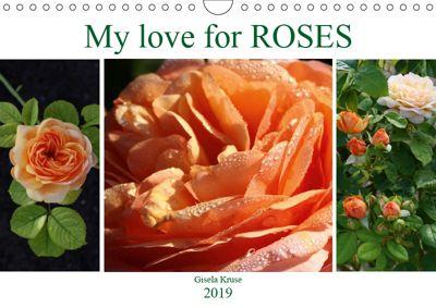 My love for Roses (Wall Calendar 2019 DIN A4 Landscape), Gisela Kruse