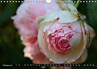 My love for Roses (Wall Calendar 2019 DIN A4 Landscape) - Produktdetailbild 2