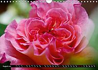 My love for Roses (Wall Calendar 2019 DIN A4 Landscape) - Produktdetailbild 8