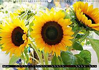 My love for sunflowers (Wall Calendar 2019 DIN A3 Landscape) - Produktdetailbild 4