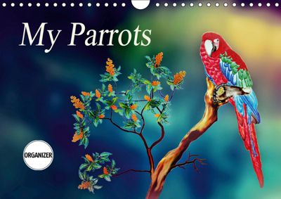 My Parrots (Wall Calendar 2019 DIN A4 Landscape), Dusanka Djeric