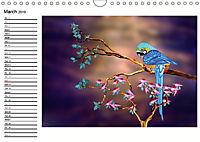 My Parrots (Wall Calendar 2019 DIN A4 Landscape) - Produktdetailbild 3