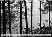 Mystical Black Forest (Wall Calendar 2019 DIN A3 Landscape) - Produktdetailbild 2