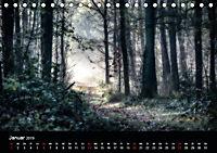 Mystische Wälder (Tischkalender 2019 DIN A5 quer) - Produktdetailbild 1