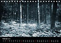 Mystische Wälder (Tischkalender 2019 DIN A5 quer) - Produktdetailbild 2