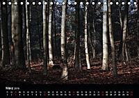 Mystische Wälder (Tischkalender 2019 DIN A5 quer) - Produktdetailbild 3