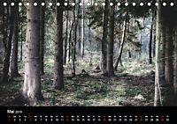 Mystische Wälder (Tischkalender 2019 DIN A5 quer) - Produktdetailbild 5