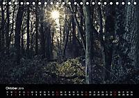 Mystische Wälder (Tischkalender 2019 DIN A5 quer) - Produktdetailbild 10