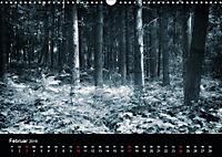 Mystische Wälder (Wandkalender 2019 DIN A3 quer) - Produktdetailbild 2