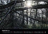 Mystische Wälder (Wandkalender 2019 DIN A3 quer) - Produktdetailbild 6