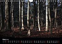 Mystische Wälder (Wandkalender 2019 DIN A4 quer) - Produktdetailbild 11