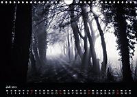 Mystische Wälder (Wandkalender 2019 DIN A4 quer) - Produktdetailbild 10