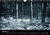 Mystische Wälder (Wandkalender 2019 DIN A4 quer) - Produktdetailbild 2