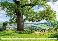 Mystischer Disibodenberg (Wandkalender 2019 DIN A2 quer) - Produktdetailbild 2