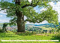 Mystischer Disibodenberg (Wandkalender 2019 DIN A4 quer) - Produktdetailbild 2