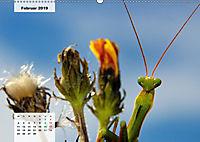 Nahe dem BodenAT-Version (Wandkalender 2019 DIN A2 quer) - Produktdetailbild 2